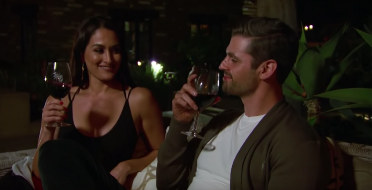Nikki Bella & Peter Kraus Would Go On Another Date, But Only Under This Major Condition