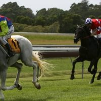 Race-by-race guide and tips for Ballina on Monday