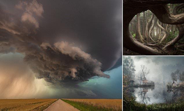 The winners of the International Landscape Photographer of the Year