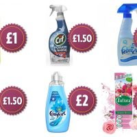 Iceland launches massive sale on cleaning products with prices starting from £1 – including some of Mrs Hinch's favourites