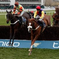 Cheltenham Festival 2019: Magners Cheltenham Gold Cup preview, tv schedule, race time, tips, runners and riders and odds