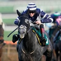 Betfair Hurdle set to be a cracker as Al Dancer heads 23 confirmed for Saturday's big race