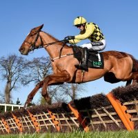 Willie Mullins left puzzled after Melon flops in Irish Champion Hurdle behind Apples Jade