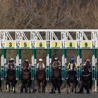 Thursday's racing tips: The Wizard of Odds' stat attack for today's racing at Huntingdon, Doncaster, Ffos Las and Chelmsford