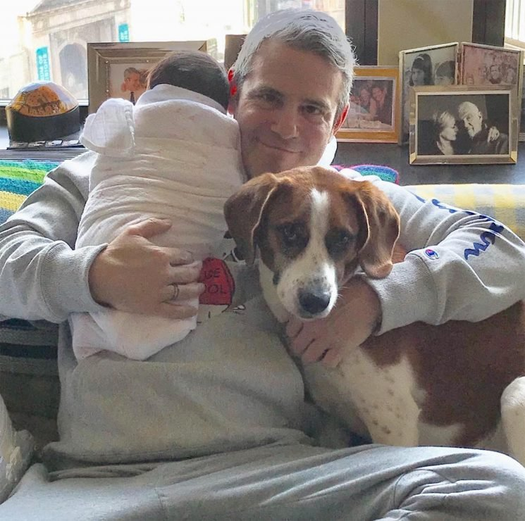 New Dad Andy Cohen Is Smitten with His 'Two Valentines,' Son Benjamin and Dog Wacha: 'Lucky Me'