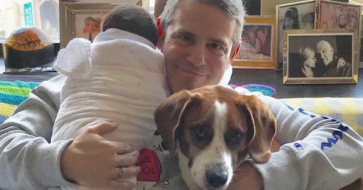 Andy Cohen Gets Dad-Shamed for Letting His Dog Sniff His Newborn Baby's Face