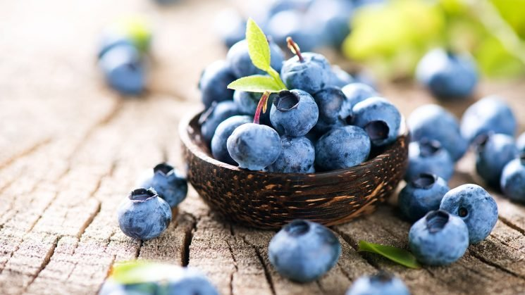 You're Going to Want to Get Some Blueberries During Your Next Shopping Trip