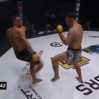 Cage fighter snaps leg in horror injury as sickening crack rings out around arena