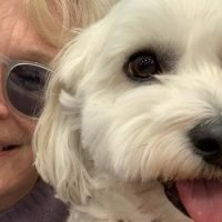 Glenn Close's Dog Is Rightfully Becoming Instagram Famous