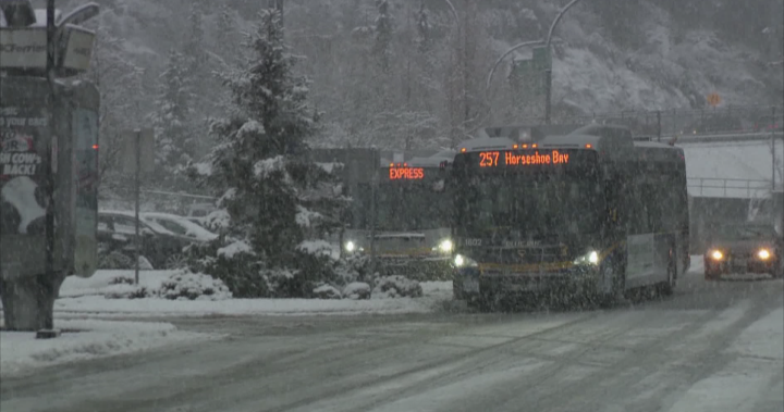 Powerful, icy winds join snow in forecast for Metro Vancouver, Fraser Valley