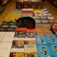 Turkey to scrap VAT on books, printed media, Erdogan says