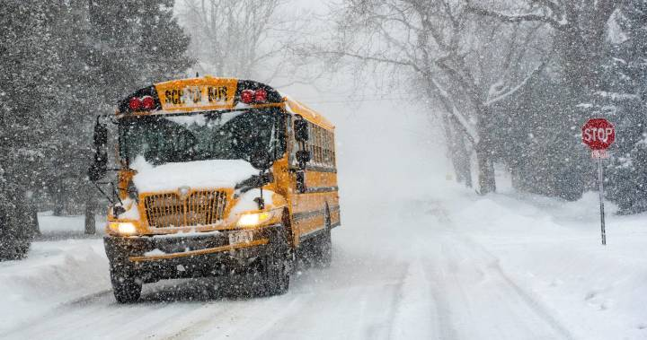 Wednesday school closures in Metro Vancouver, The Fraser Valley, and Vancouver Island