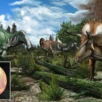 Dinosaurs were thriving before the deadly asteroid strike