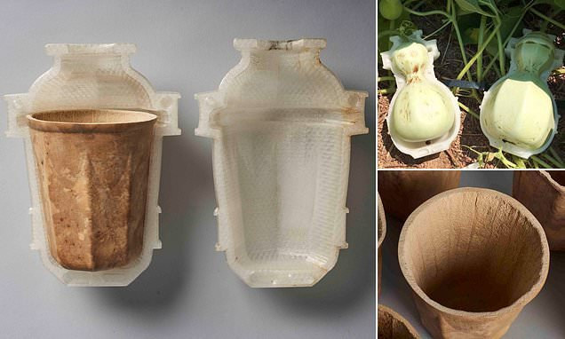 Biodegradable 3D-printed mugs made from fruit waste