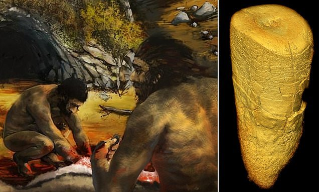 Tooth of an adult Neanderthal found in France reveals meat diet