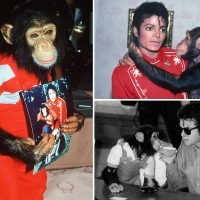 Inside Michael Jackson and Bubbles' bizarre relationship – from sharing a toilet to late nights in recording studios and 'cruel beatings'