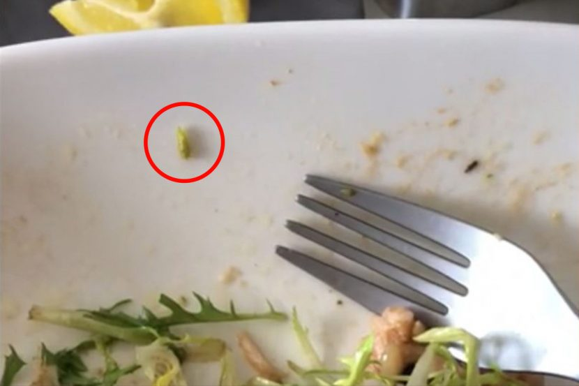 Passenger flying in first class left disgusted after finding a LIVE maggot in his in-flight meal