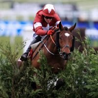 Cheltenham Festival tips: Templegate's best bets for the Champion Chase and the rest of day 2 of the Festival