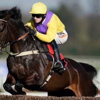 Kalashnikov another Aintree bound after unlucky ride in the Arkle at Cheltenham Festival