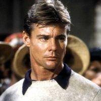 Airwolf Actor Jan-Michael Vincent Dies at 74 After Cardiac Arrest