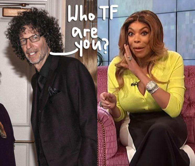Howard Stern SLAMS 'Jealous Bitch' Wendy Williams For Suggesting He's Gone Soft!