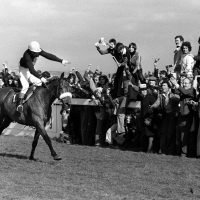 Grand National favourites: Use our list of past winners for your form study ahead of this year's renewal