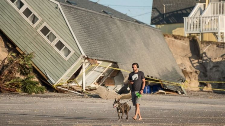 Bill would make it illegal to abandon tied-up dogs during hurricanes