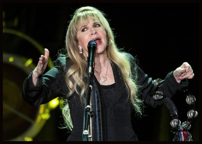 Stevie Nicks Embraces Popularity Among Drag Queens