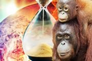 Earth on 'brink of ANNIHILATION': Humans have just 30 years to SAVE Earth from extinction