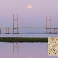 Stargazers will be treated to a full Pink moon on Good Friday