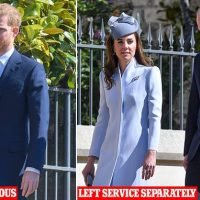 Harry 'desperate to avoid' William claims body language expert
