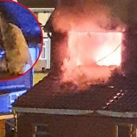 Desperate relative makes ladder escape from house fire