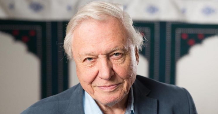 Sir David Attenborough's most inspirational quotes and his fight for the planet
