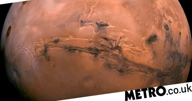 'Life could have existed on Mars': Alien-hunting scientists make huge discovery