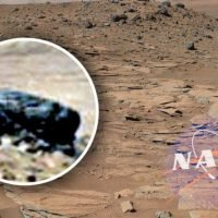 Life on Mars? 'Alien face' in NASA rover photo is 100 percent PROOF of UFO activity