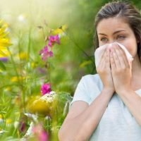 Pollen count warning: Six plants hay fever sufferers should avoid as high counts continue