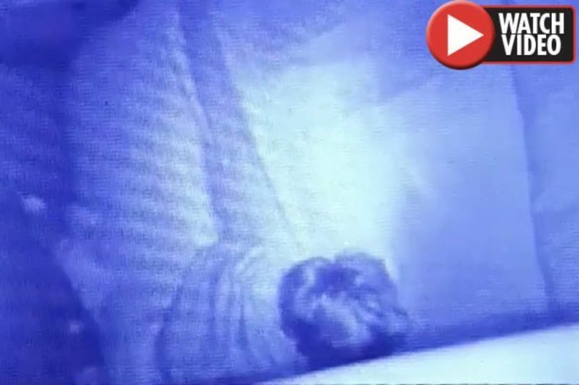 Mum CONVINCED ghosts exist after making chilling discovery on baby camera