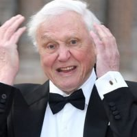 Outraged David Attenborough fans slam BBC documentary AGAIN: 'How dare they?'
