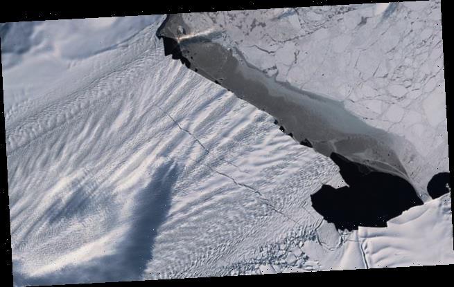 نتيجة بحث الصور عن Shocking moment a giant iceberg three times the size of PARIS carves off Antarctic glacier